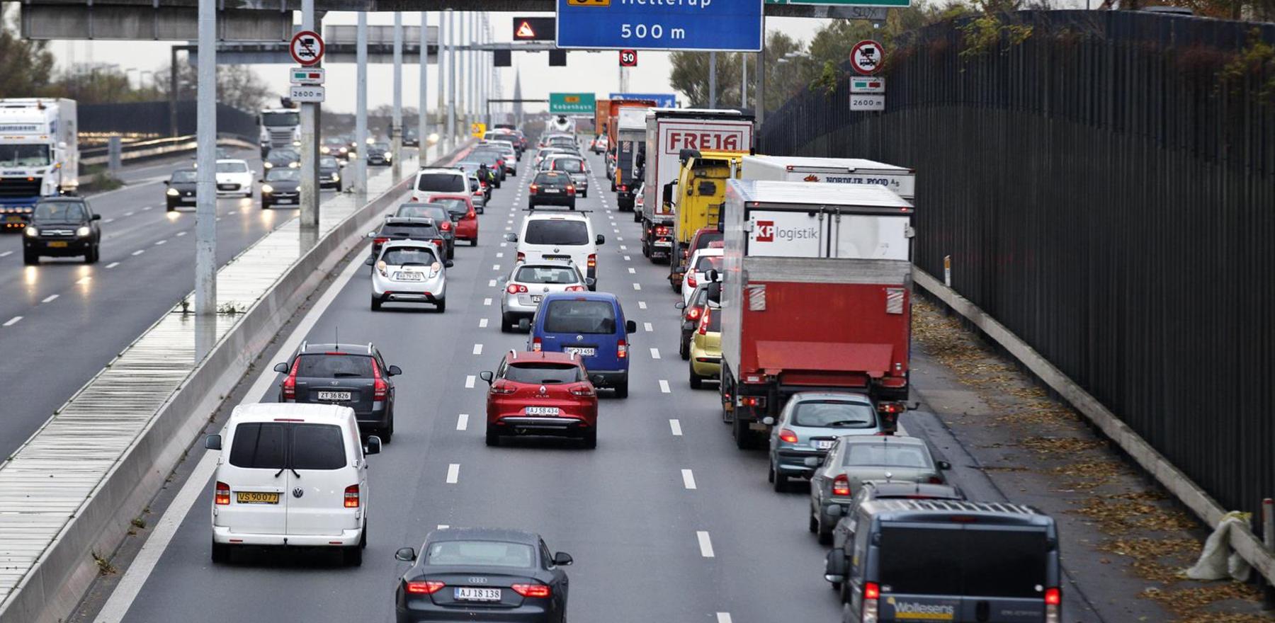 The Danish Road Directorate (Vejdirektoratet)